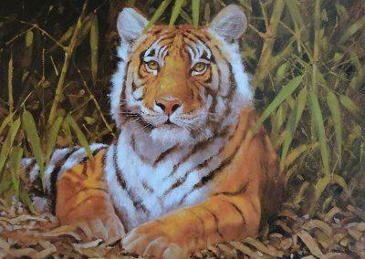Grabado Tigre 10/26
