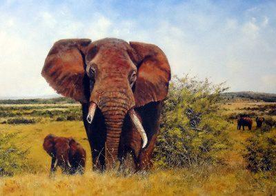 Grabado Elefantes 21/26