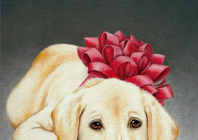 MX171 Cachorro