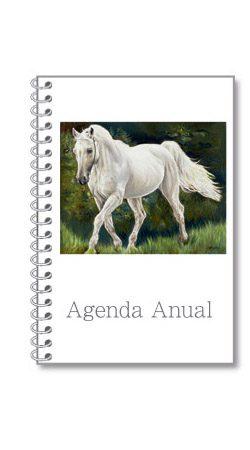 Agenda Anual